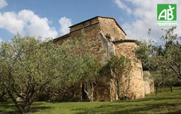 Château Saint Sauveur
