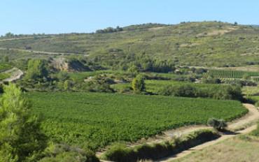 Domaine Cathala
