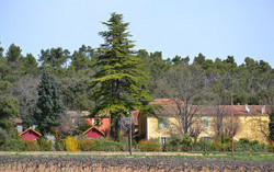 Domaine Saint Mitre